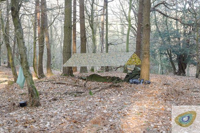 tarp setup outside in woods