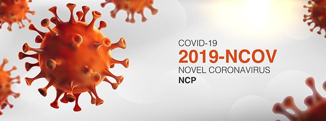 Frontier Bushcraft Courses: Coronavirus Update – March 2021